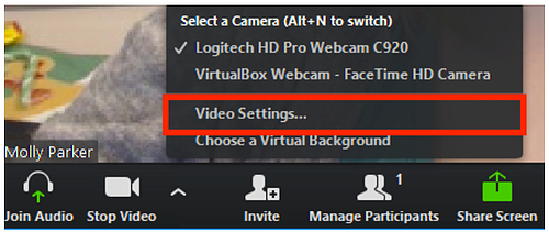 Zoom - Video Settings
